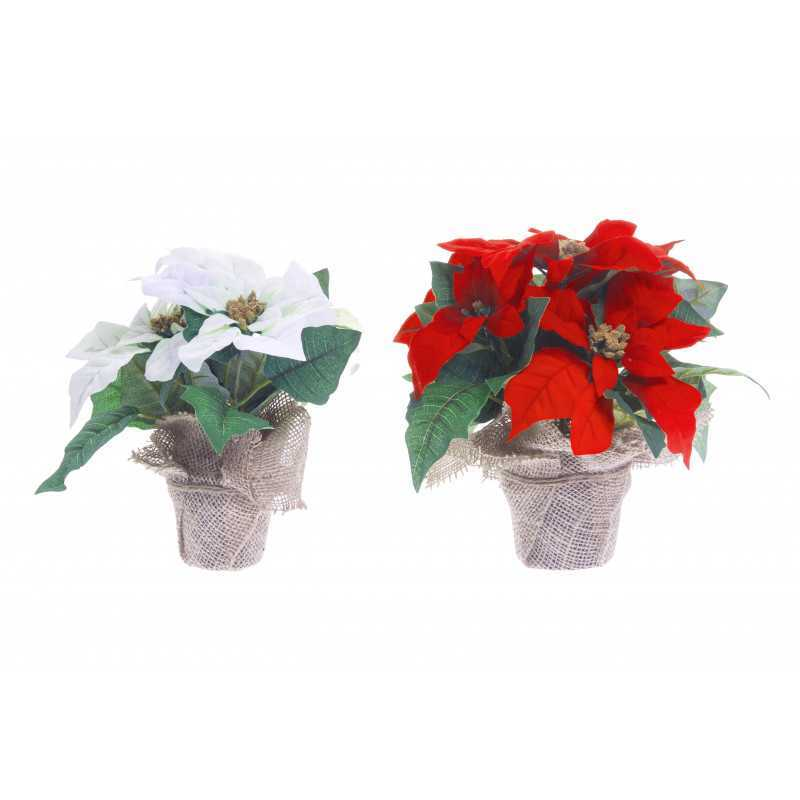 Joulutähti 3-kukan 23 cm