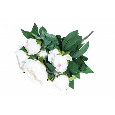 Pionikimppu valkoinen 50 cm