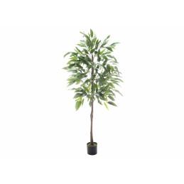 Mangopuu 180 cm